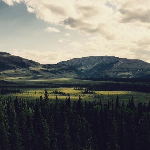 Summer Tundra Valley