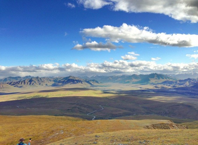 A ribbon of the Denali Park Road in the distance (Stewart for scale)