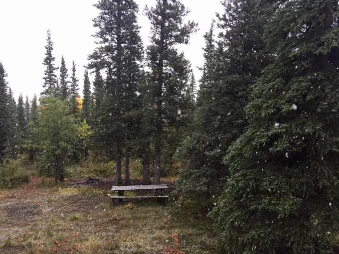 Photo of first snow falling at the cabin