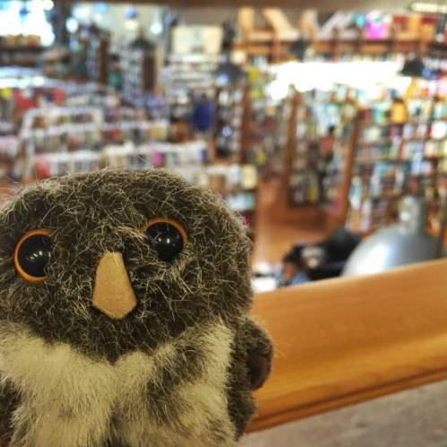 Owlish Bookstore