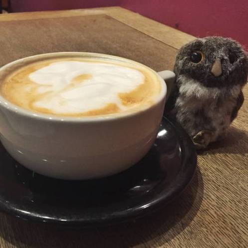 Owlish Coffee