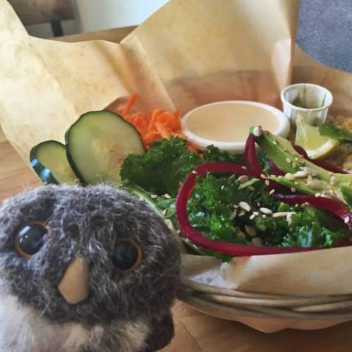 Owlish Lunch